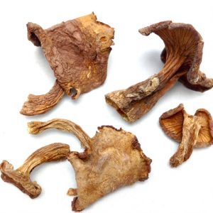 Dried Chanterelle Mushrooms by The Truffle Market