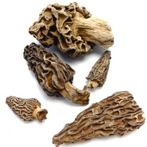 Dried Morel Mushrooms by The Truffle Market